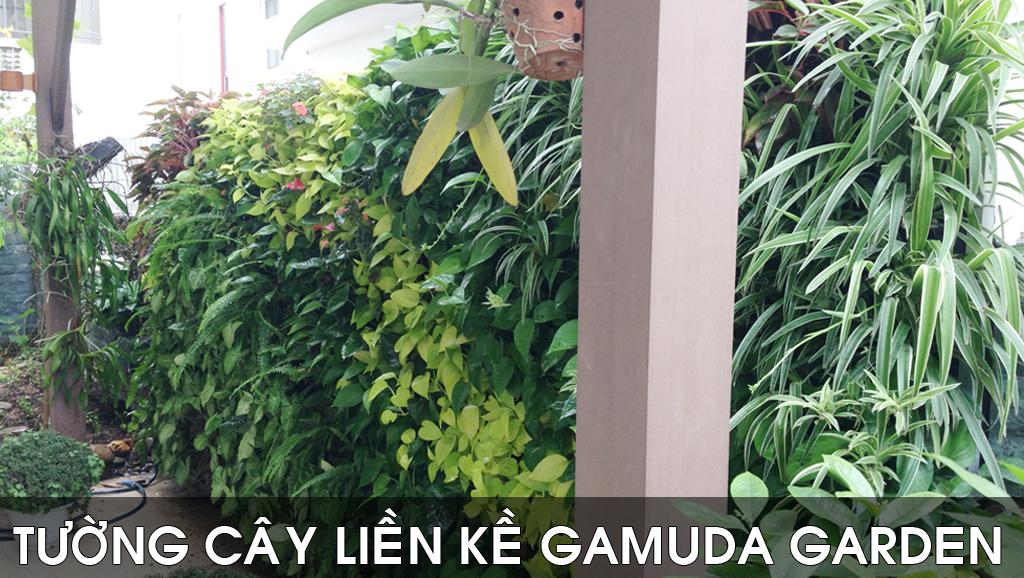 Vườn đứng Bt. Gamuda