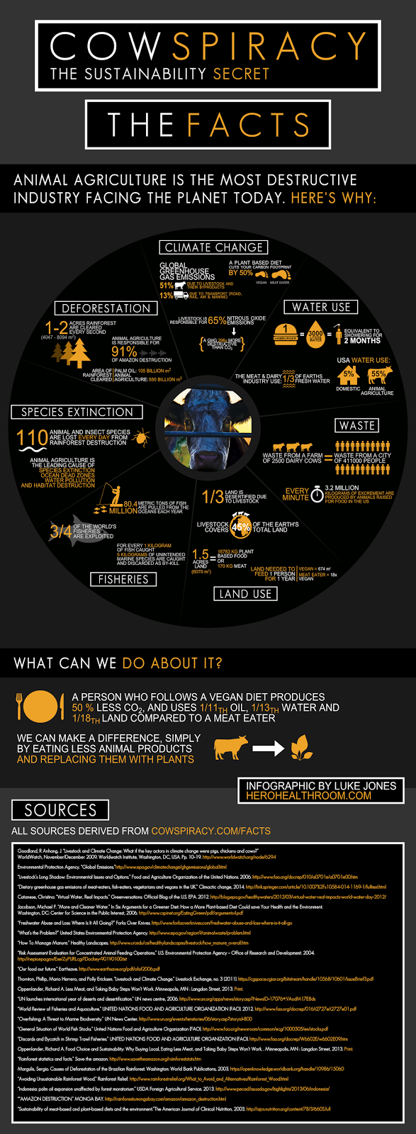 Cowspiricy infographic