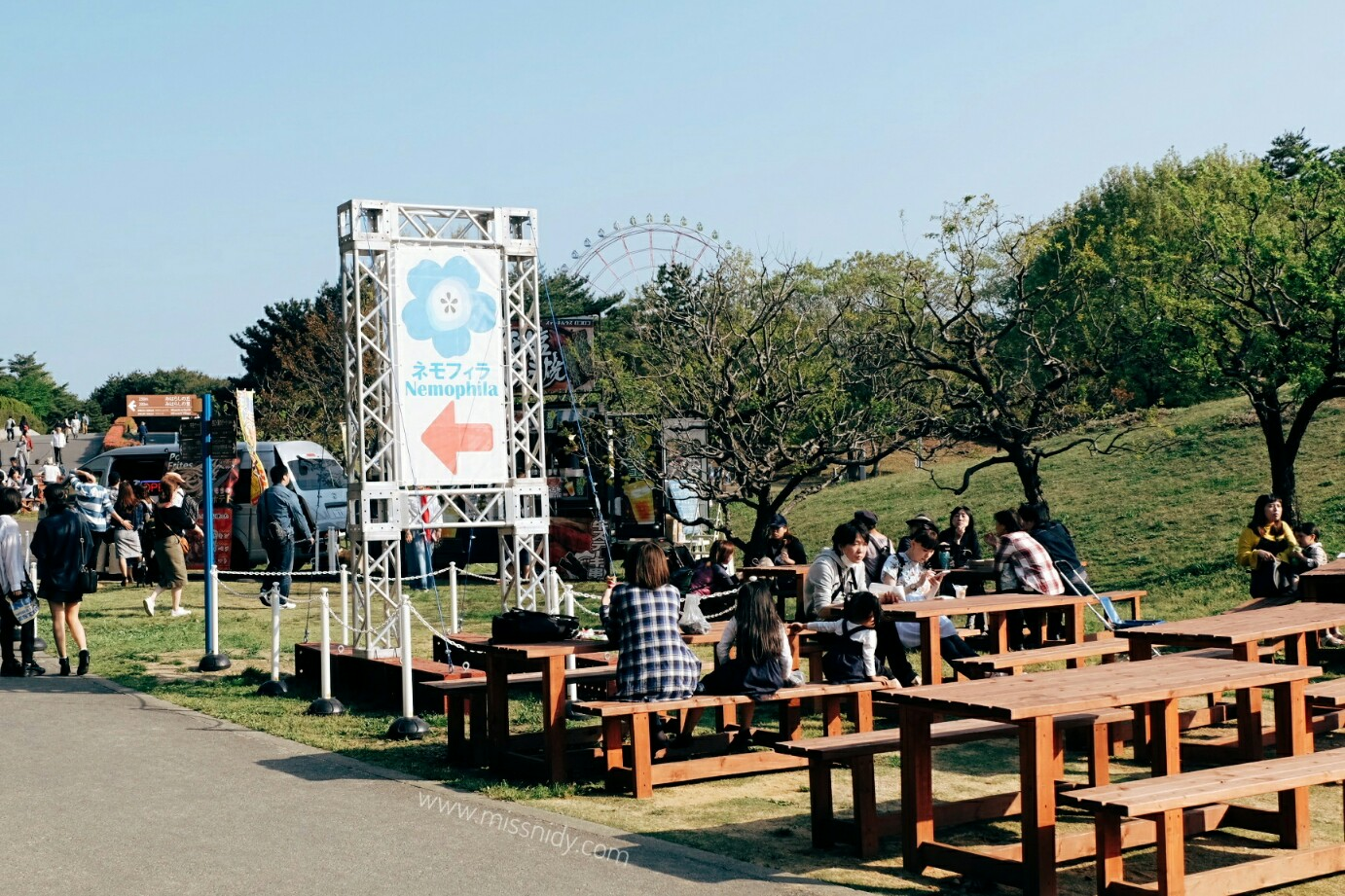 FACILITIES AT HITACHI SEASIDE PARK