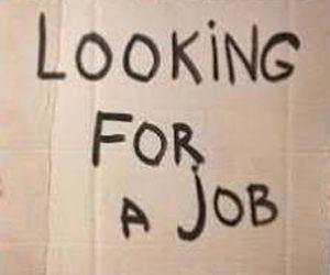 Lowongan Kerja sebagai Sopir di Perusahaan Distribusi