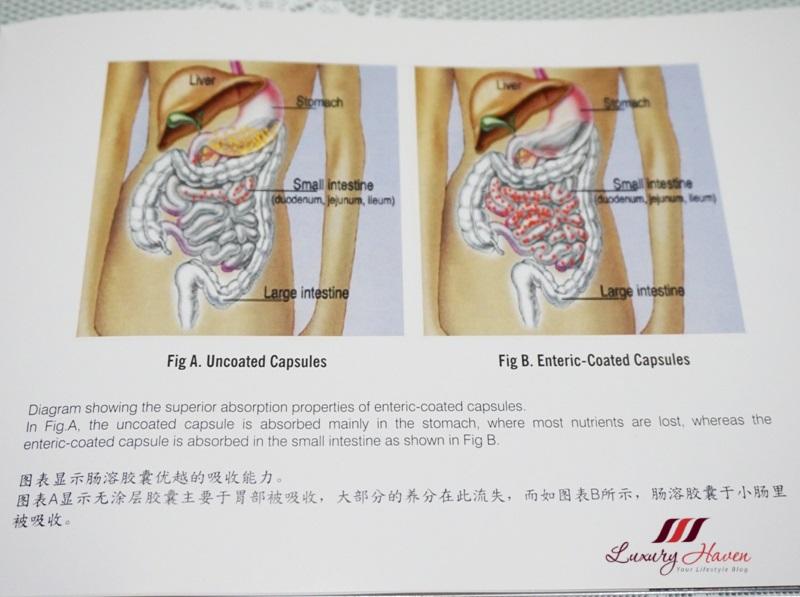 dgii enteric coated capsules prevent gastric discomfort