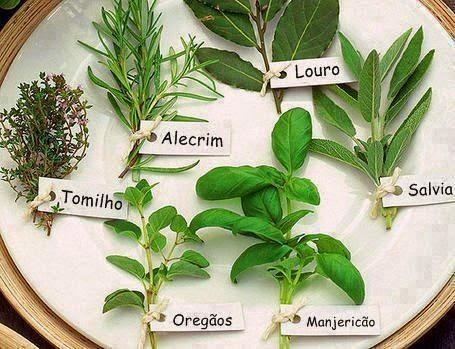 Resultado de imagem para As ervas aromáticas gastronomia