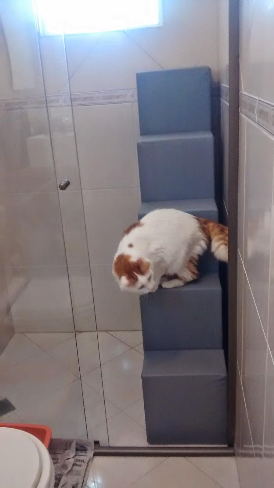 rede de proteção para gatos