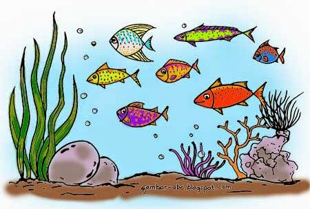 Gambar Mewarnai Ikan Laut Contoh Gambar Mewarnai