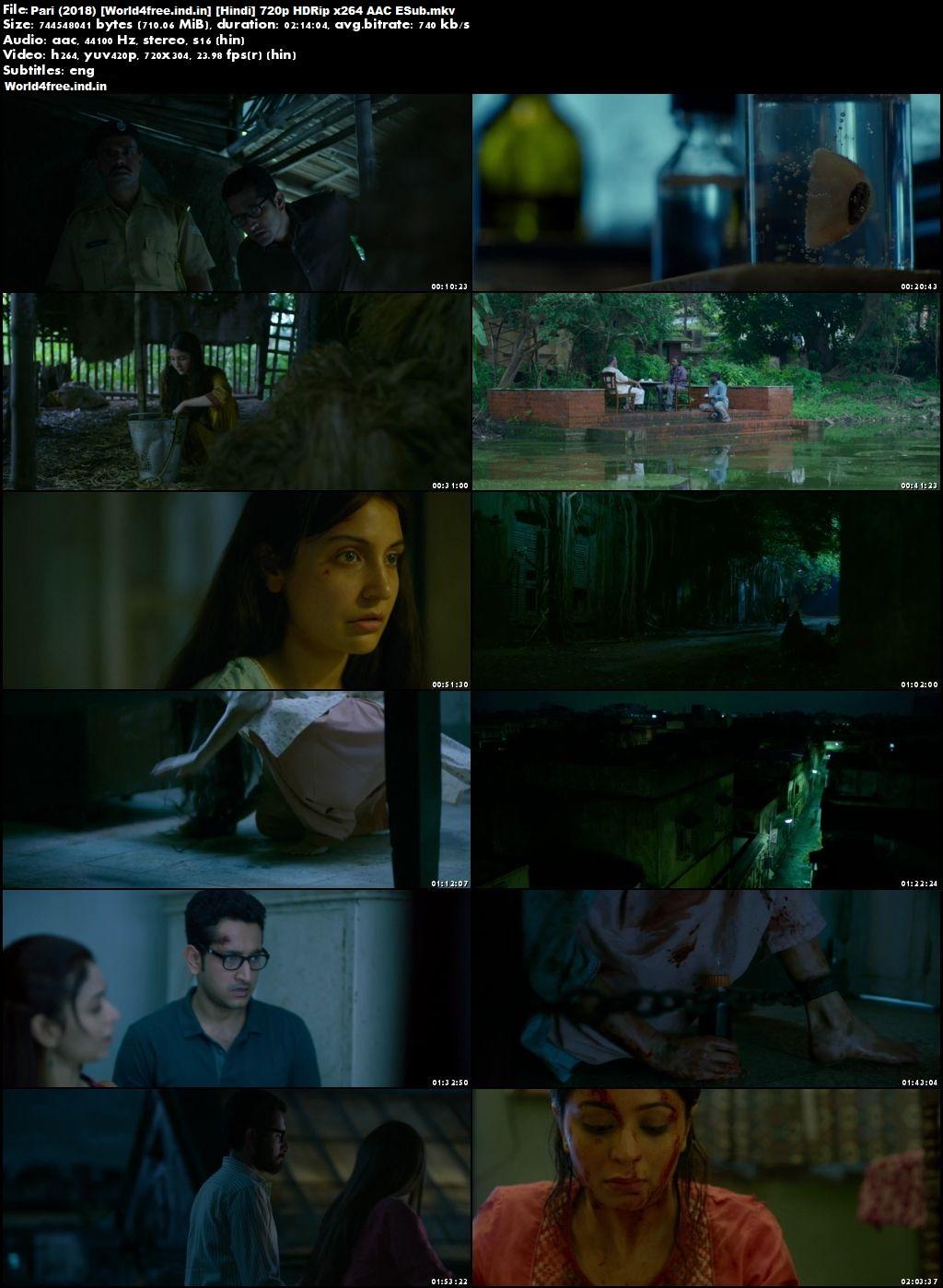 Pari 2018 world4free.ind.in HDRip 720p Full Hindi Movie Download