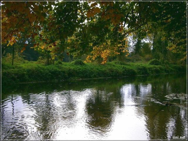 ảnh dòng sông nhỏ và mùa thu