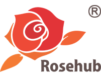 Rosehub Edutainment Pvt. Ltd