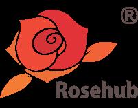 Rosehub Edutainment Pvt. Ltd