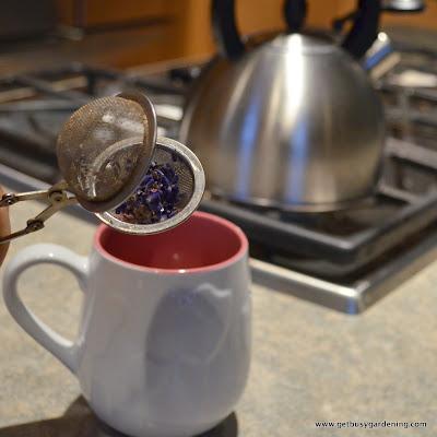 Making lavender tea