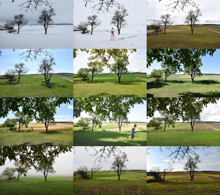 12 Monate ein Blick - 12 Fotos von Weinviertler Felder im Jahreslauf