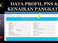 Inilah Cara Cek NIP Dan Pangkat Pada Profil PNS BKN Terbaru 2018