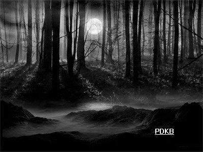 Kumpulan puisi tentang malam