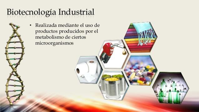 [صورة مرفقة: biotecnologa-en-el-siglo-xxi-4-638.jpg]