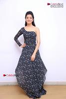 Telugu Actress Richa Panai Stills in One Shoulder Floral Long Dress at Rakshaka Bhatudu Movie Interview  0020.JPG
