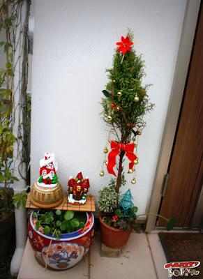 クリスマス寄せ植え
