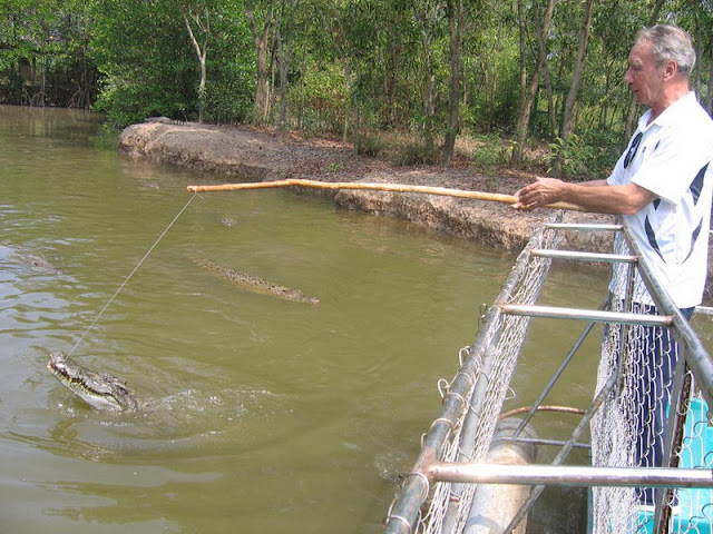 Crocodile fishing in Eco tour to Can Gio