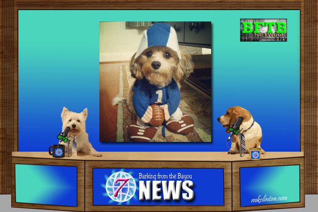 BFTB NETWoof News gives Three cheers to Torrey & Chanel Smith for paying adoption fees for cats & dogs