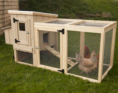 Chicken House Plans 3 Top Tips For Building Chicken Coops