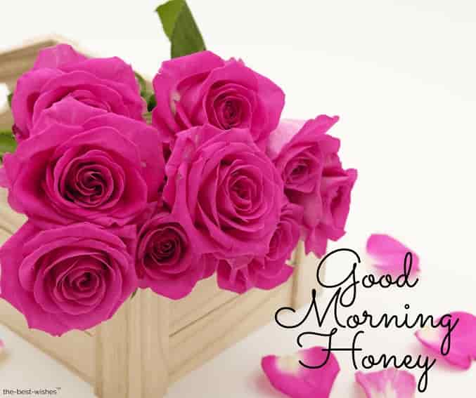 good morning honey with rose