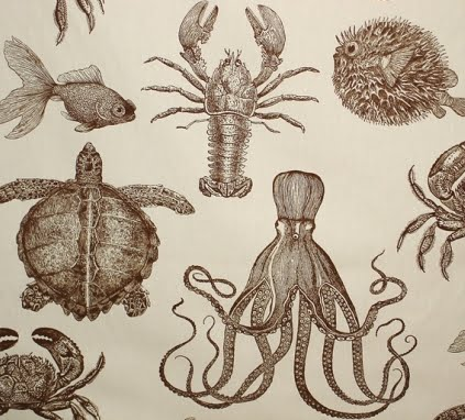 ocean fabric