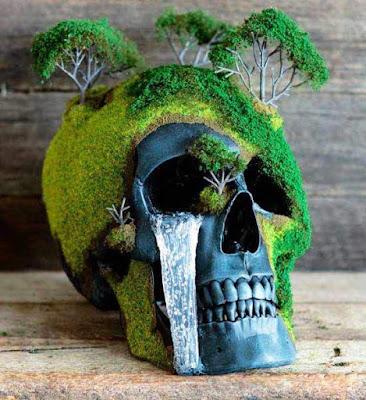 Jack of dust human skulls