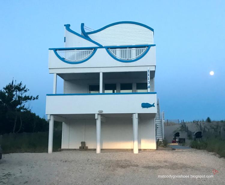 Long Beach Island | Ms. Toody Goo Shoes