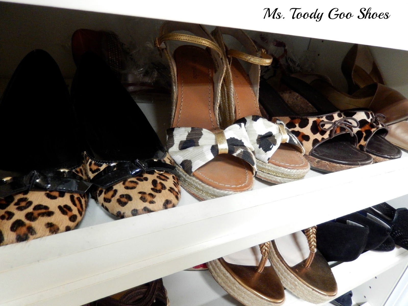 Decorating With Animal Prints --- Ms. Toody Goo Shoes