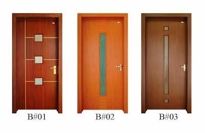 Minimalist Modern Door Model