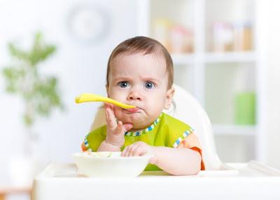 Menu Foods Baby 18 Months