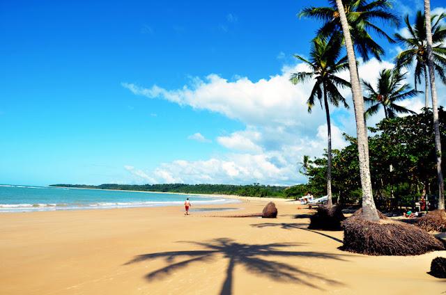 A praia dos Coqueiros em Trancoso é procurada por ser de fácil acesso e tranquila, possui extensa faixa de areia com coqueiros que fazem sombra