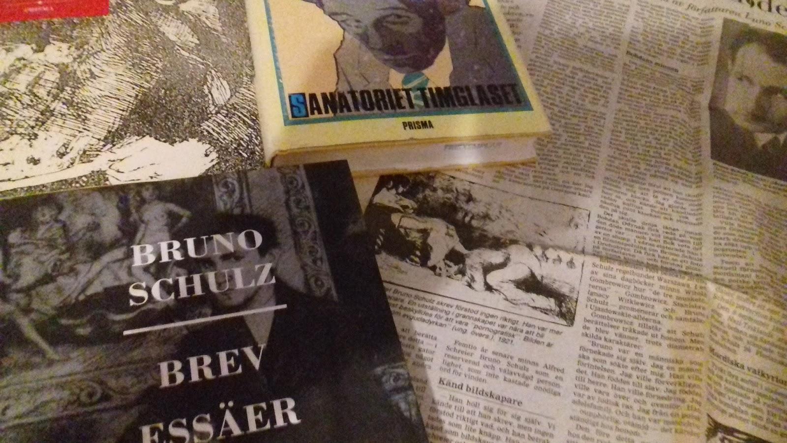 Bruno schulz brev essaer noveller