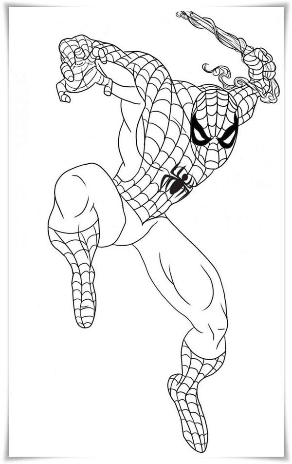 kostenlose malvorlagen spiderman  malbild