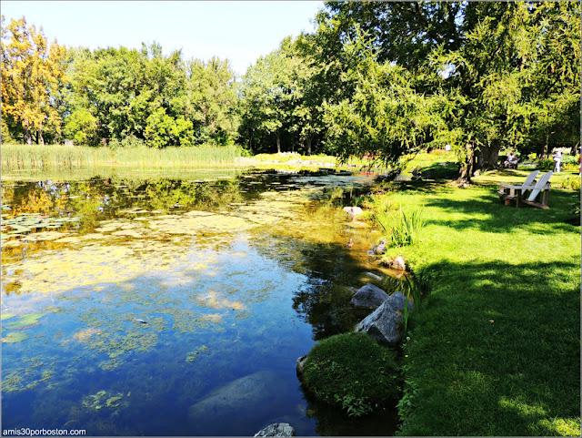Lago del Flowery Brook Lilacs Jardín Botánico de Montreal