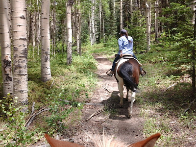 Exterior photo in a forest with a lady riding a horse on a trail with Aspen trees on each side.