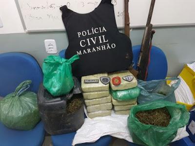 Policiais Civis apreendem 30 mil pés de maconha no interior do Maranhão