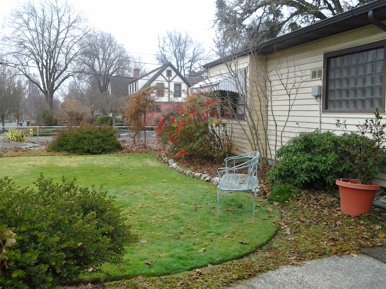 Are Mulched Leaves Good Lawn
