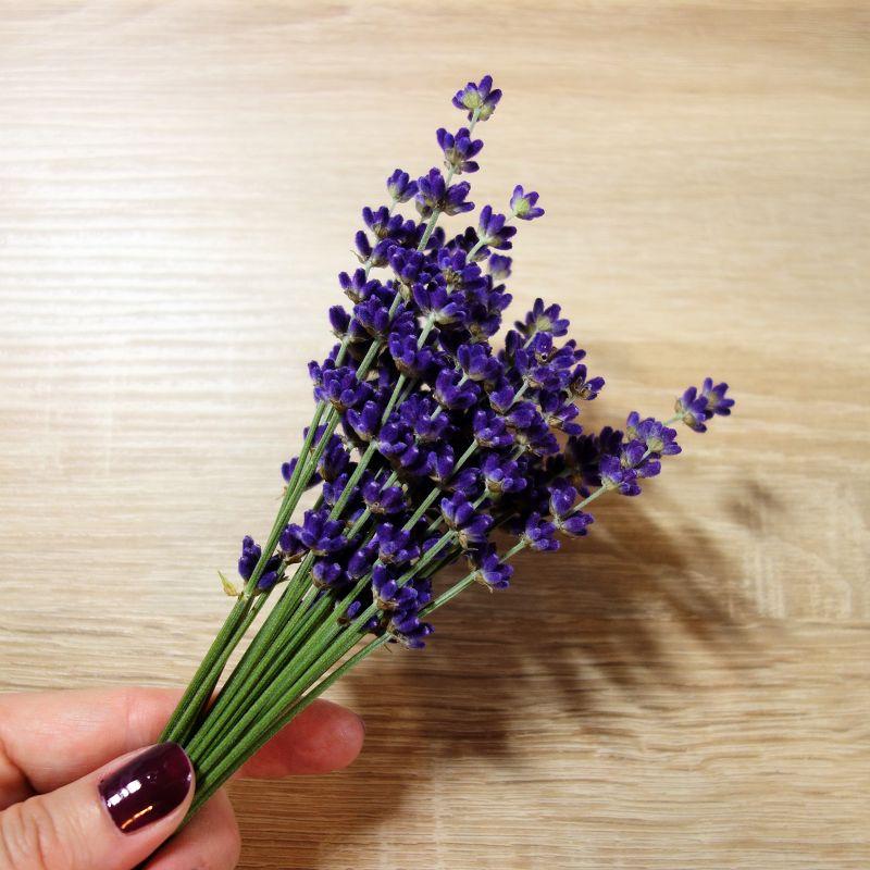 Lavendel deko, Lavendel deko ideen, lavendel dekoration, lavendel deko basteln, lavendel dekoration selber machen, lavendel deko diy