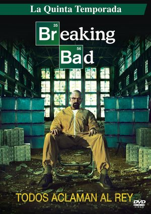 Breaking Bad (Serie de TV) (Temporada 5) (2013) [MKV – 720p] [Latino]