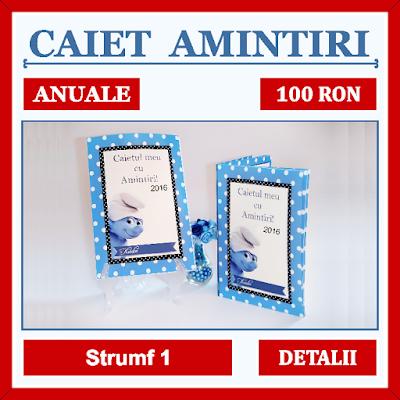http://www.bebestudio11.com/2016/12/caietul-cu-amintiri-anuale-strumf-1.html