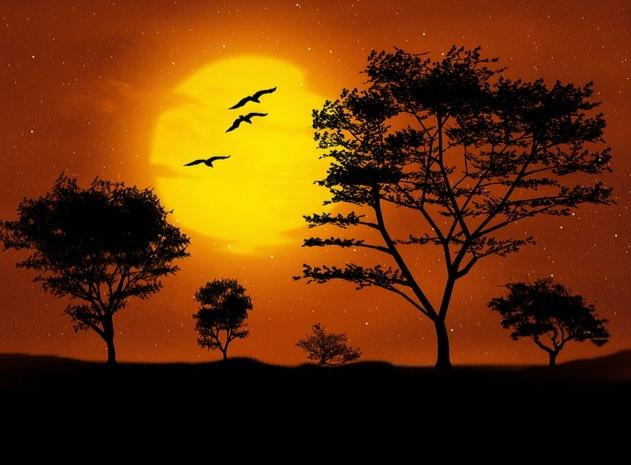 Gambar Bulan Indah Saat Malam  Kumpulan Gambar
