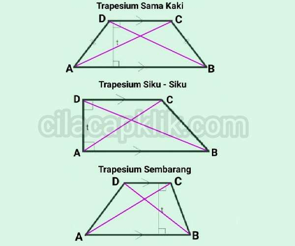 macam+macam+trapesium