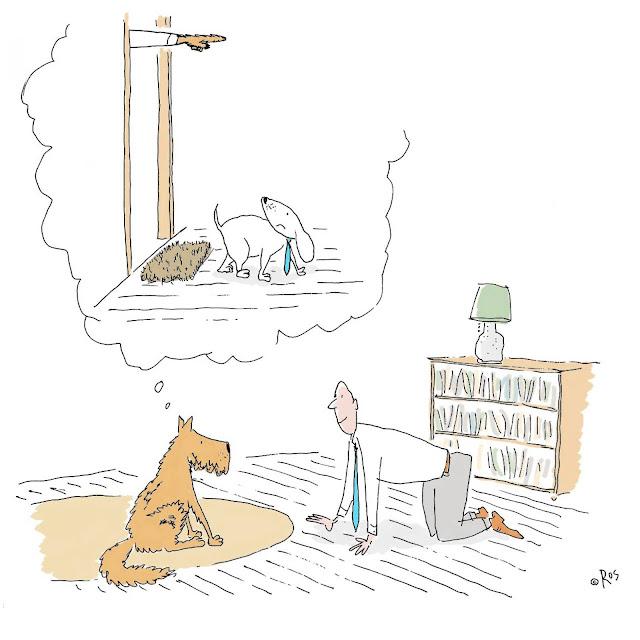 Humor en cápsulas. Para hoy miércoles, 8 de junio de 2016