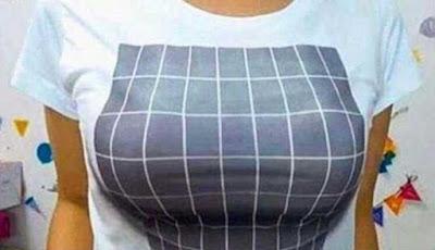 Kaos oblong pintar