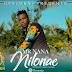 New Audio|Mr.Nana_Nilonae|Download Now