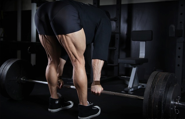 Mięśnie kulszowo-goleniowe. Ćwiczenia, przykurcze, uszkodzenia.