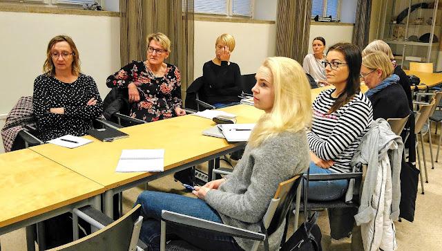 Kahdeksan ruotsinopettajaa istuu pöydän ääressä keskustelemassa.