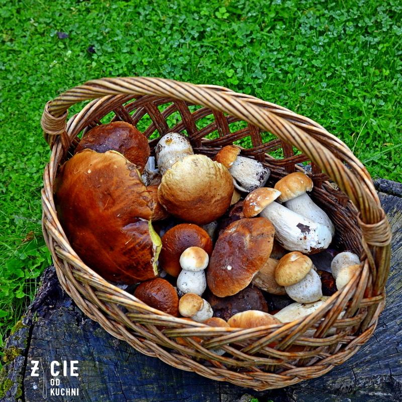 grzyby, prawdziwki, koszyk z grzybami, pazdziernik sezonowe owoce pazdziernik sezonowe warzywa, sezonowa kuchnia, pazdziernik, zycie od kuchni
