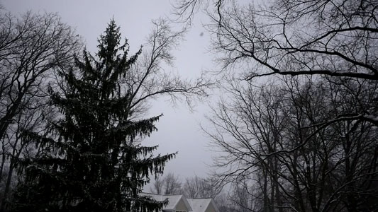 تنزيل فيديو ثلج متساقط بجوده عاليه للمونتاج, Snow Falling Footage Motion Background HD