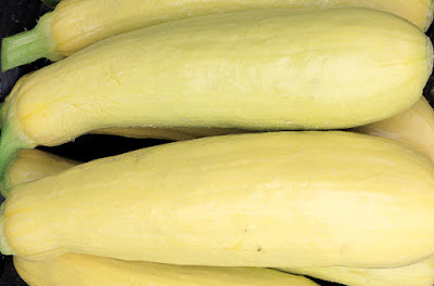 how many calories are in yellow summer squash
