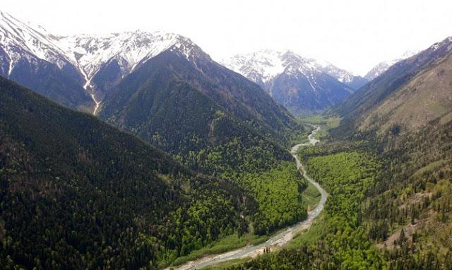 Armenia planea que el 20% de su país tenga bosques para 2050